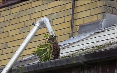 Gutter Cleaning Beaconsfield   Genie Clean